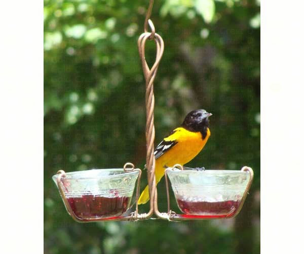 Birds-Jelly Feeder-Mealworm Feeder-Two Cups