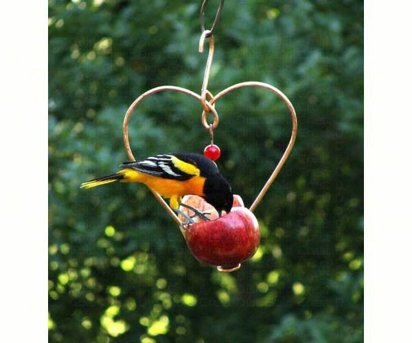 Birds-Fruit Feeder-Beautiful-Heart Shaped