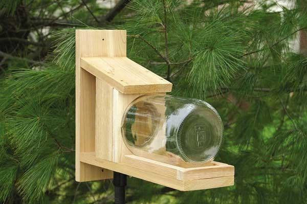 Squirrel Jar Feeder, Back Yard Enjoyment - Expressions of Home