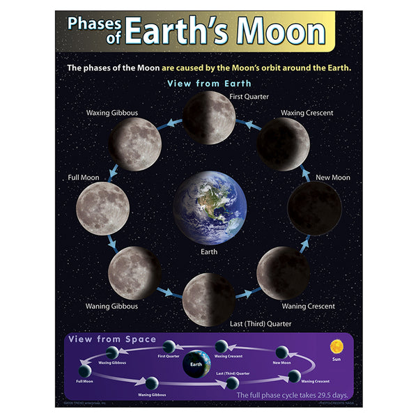 Bulletin Board Chart-Educational-The Solar System-Phases of the Moon