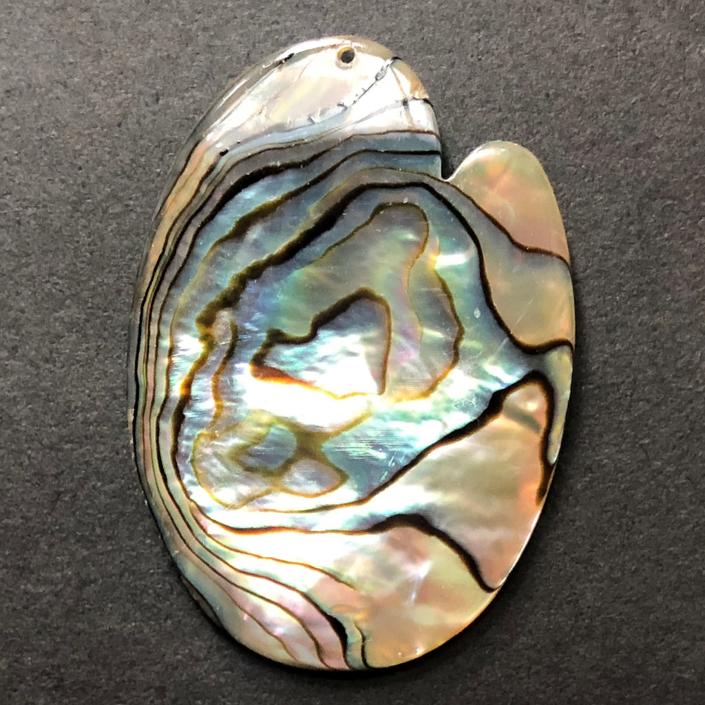 53X38MM Abalone Shell Drop (3 pieces)