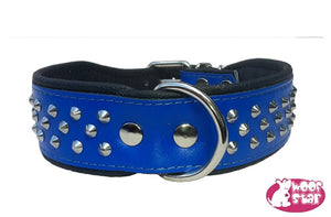 Studded collar -Blue
