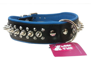 Spiked Dog Collar - Blue