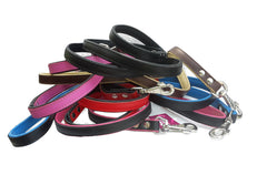 Lead - Leather Dog Lead - Colours