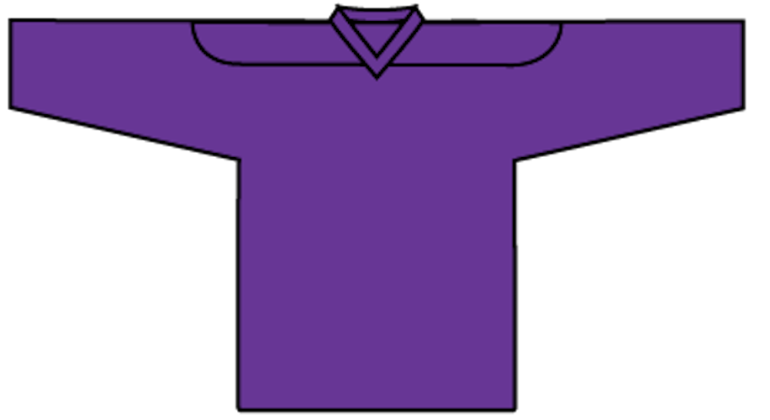 Economical Practice Jersey: Purple