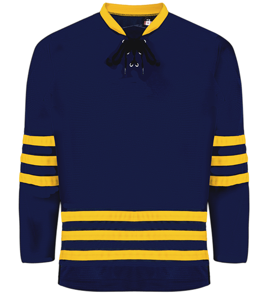 Premium Team Jersey: Michigan University Navy