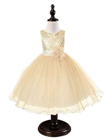 Ivory Cream Sequined Bodice Dress w/mesh overlay