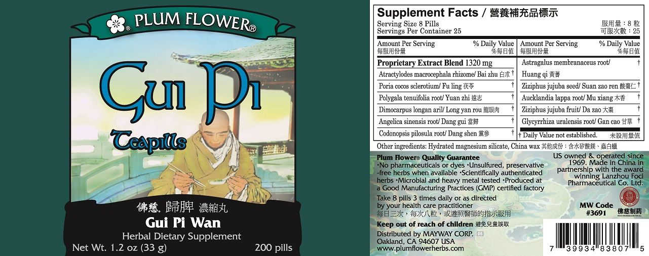 Gui Pi Wan (200 Pills) (Plum Flower)