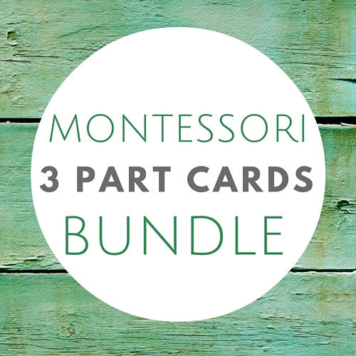 Montessori 3 Part Card Bundle - Carrots Are Orange - 1