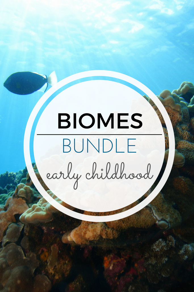 Montessori Biomes Printables Bundle