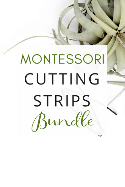 Montessori Cutting Strips Bundle