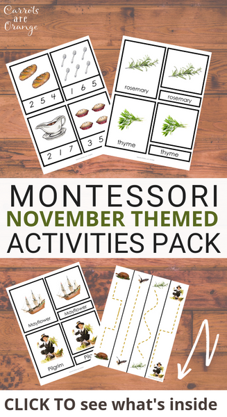 Montessori November Activities Pack