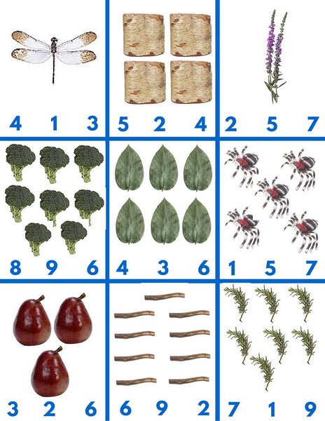 Nature Math Activities Pack - Carrots Are Orange - 2