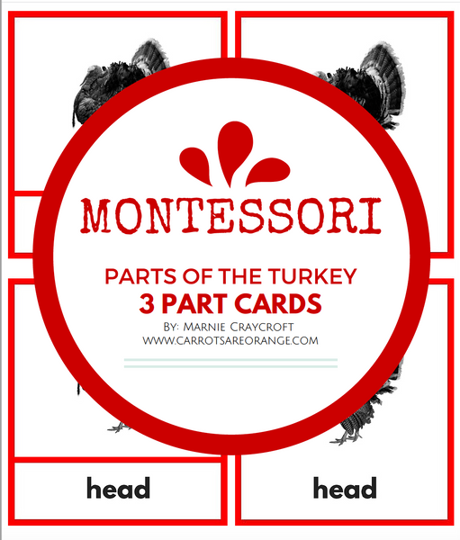 [FREE] Montessori Parts of the Turkey 3 Part Cards