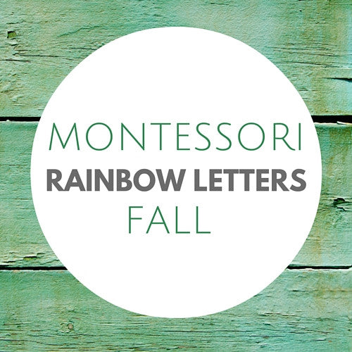 Fun & Festive Fall Themed Rainbow Letters - Carrots Are Orange - 1