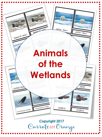 Animals of the Wetlands Montessori 3-Part-Cards
