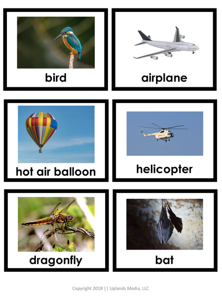 Land, Air, Water Sort with REAL Images