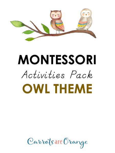 Montessori Activities Pack - Owl Theme