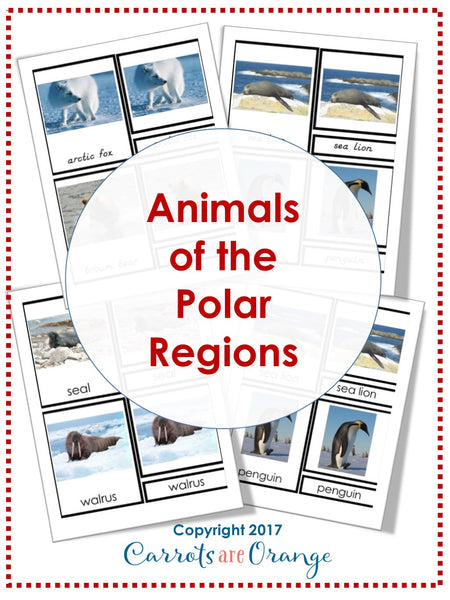 Animals of the Polar Regions Montessori 3 Part Cards
