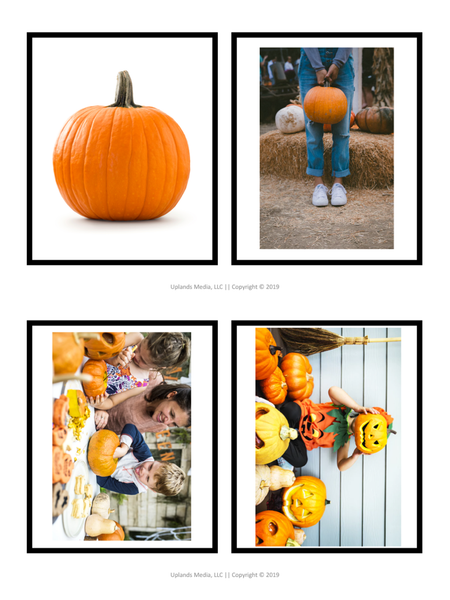 Montessori Activities Pack - Pumpkin Theme