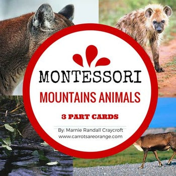 Animals of the Mountains Montessori 3-Part-Cards