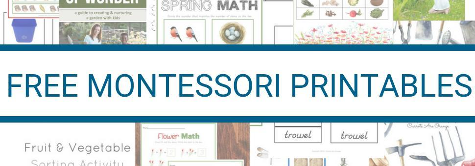 Recommended Montessori Products for Parents