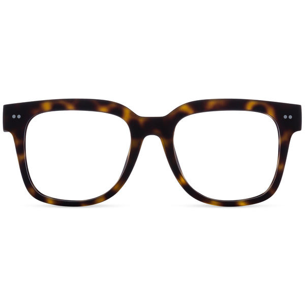 Laurel Screen Readers Tortoise