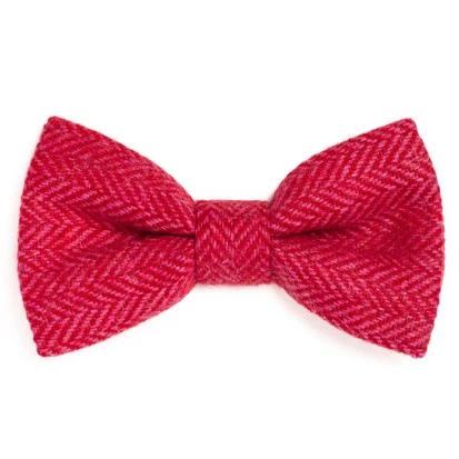 Orwell & Browne Bow Tie - Cerise