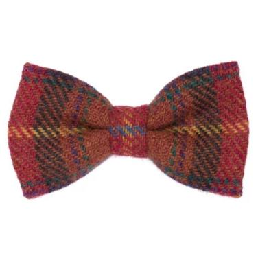 Orwell & Browne Bow Tie - Rural Blaze