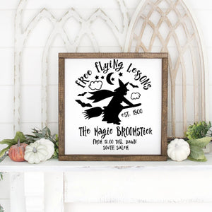 Free Flying Lessons Halloween Hand Painted Framed Wood Sign White Board Black Letters