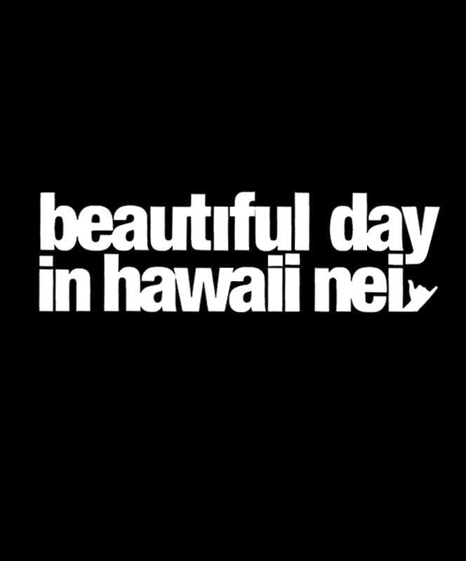 hawaii-domestic-market-stickers-white-9-inch-hawaii-domestic-market-sticker-9-hdm-beautiful-day-front
