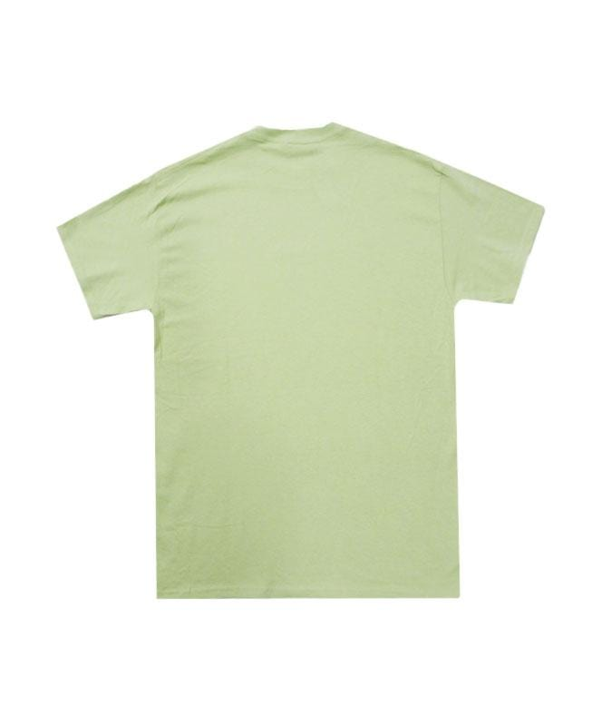 island-snow-hawaii-mens-shirts-island-snow-hawaii-midweight-tee-is-corpo-low-back-pistachio