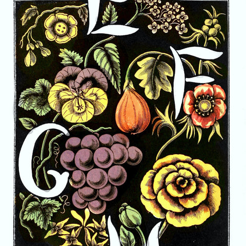 "Digital Download ""The Alphabet of Flowers and Fruit"" E F G H (c.1856) - Instant Download Printable - ThirdShiftVintage.com"