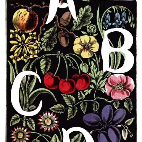 "Digital Download ""The Alphabet of Flowers and Fruit"" A B C D (c.1856) - Instant Download Printable"