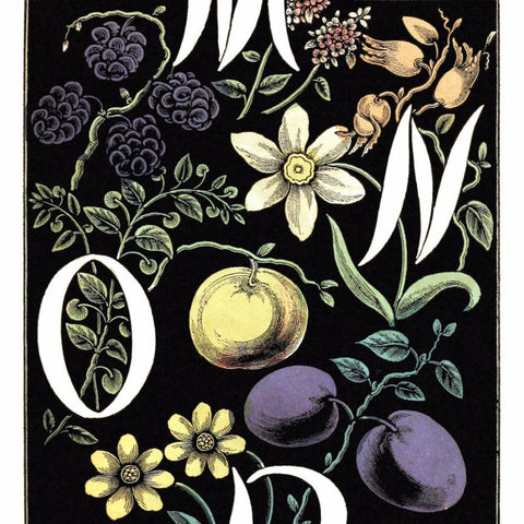 "Digital Download ""The Alphabet of Flowers and Fruit"" M N O P (c.1856) - Instant Download Printable - thirdshift"