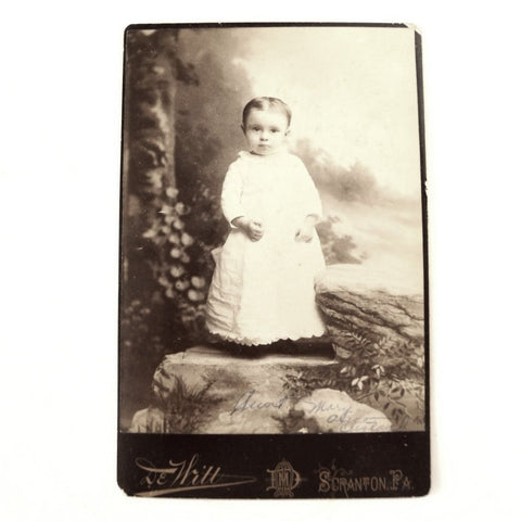 Antique Photograph Cabinet Card of Mary Alice (Custard) Evans from PA (c.1887) - ThirdShiftVintage.com