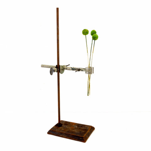 Vintage Industrial Cast Iron Lab Stand with Clamps & Test Tube (c.1950s) N4 - ThirdShift Vintage