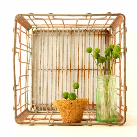 "Vintage Metal Dairy Crate / Wire Milk Crate Bottle Basket ""DAIRY FRESH"" (c.1965) - ThirdShift Vintage"