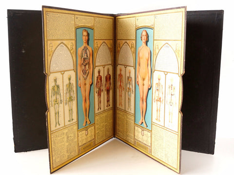 "Vintage ""Bodyscope"" Illustrated Anatomical Book with Dials (c.1935) - ThirdShift Vintage"