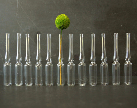 Vintage Glass Ampule 2 ml, Set of 12 (c.1980s) - ThirdShift Vintage