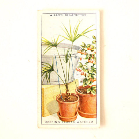 "Vintage ""Household Hints"" Cigarette Card #36 ""Keeping Plants Watered While Away"" (c.1936) - ThirdShiftVintage.com"