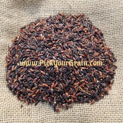 Black Rice Rice- PickYourGrain
