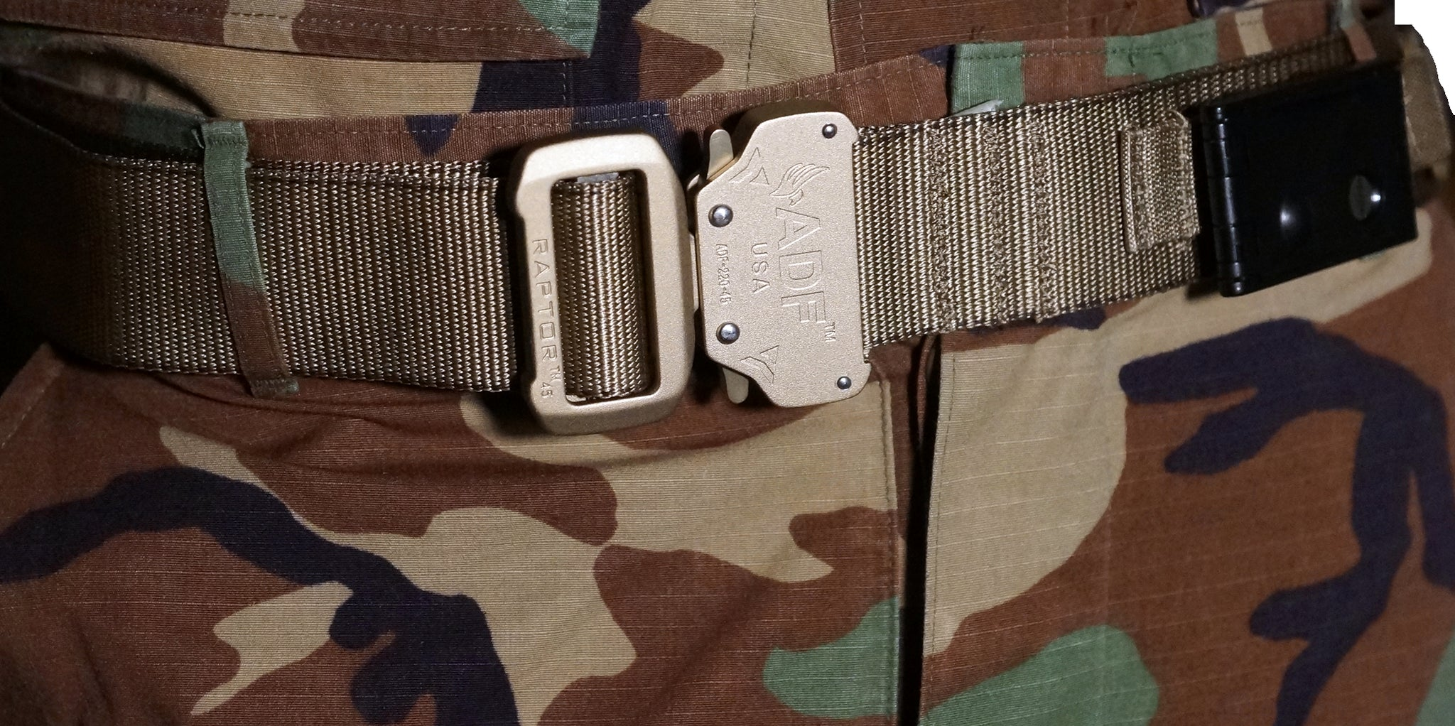 Tan/Coyote DBF Belt: Zoomed-in view of belt showing the TLD securely fitted to belt.
