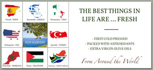 first cold pressed extra virgin olive oil from around the world italy spain greece california morocco turkey palestine south africa