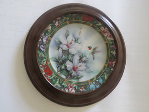 The Ruby Throated Hummingbird Collector Plate Collector Plate- Carolina China Collectibles