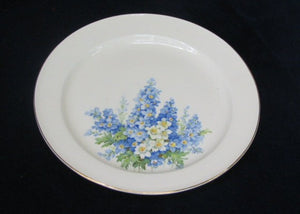 Dinner Plate by Edwin M Knowles Dinner Plate- Carolina China Collectibles