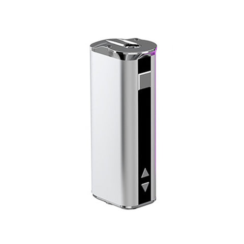 Smok R-Steam Mini