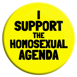 I Support the Homosexual Agenda Button