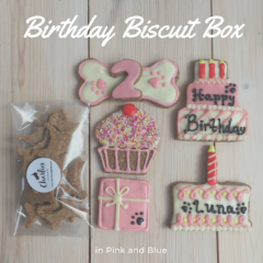 The Birthday/Gotcha Biscuit Box
