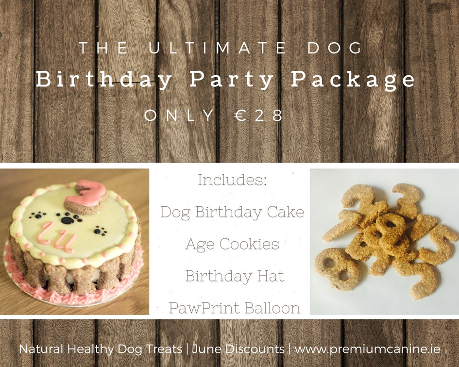 The Ultimate Dog Birthday Party Package